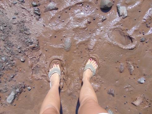Mud at the Bay of Fundy