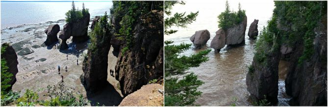 The Bay of Fundy=hopewell rocks